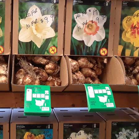 Perennial Bulb Bins