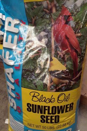 20200914 Sunflower Seed